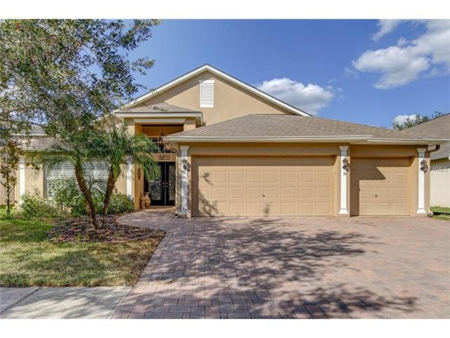 8264 Swann Hollow Drive, Tampa, FL 33647 (MLS #T2914913) :: Cartwright Realty