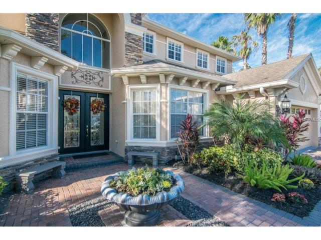 2929 Big Cypress Way, Wesley Chapel, FL 33544 (MLS #T2914948) :: Griffin Group