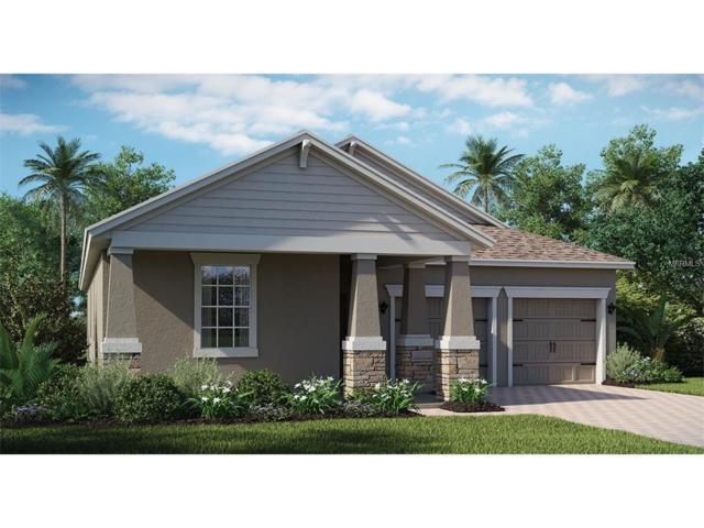 10235 Lovegrass Lane, Orlando, FL 32832 (MLS #T2914952) :: Godwin Realty Group