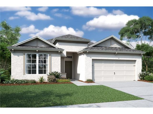 8108 Sequester Loop, Land O Lakes, FL 34637 (MLS #T2914961) :: Cartwright Realty