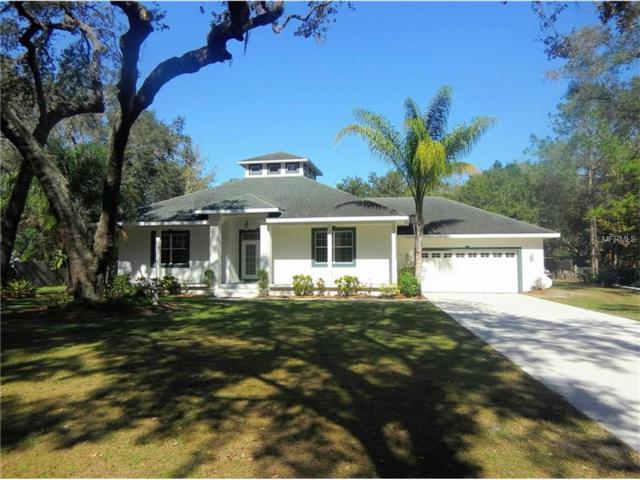 13025 Beech Street, Odessa, FL 33556 (MLS #T2914982) :: Team Bohannon Keller Williams, Tampa Properties