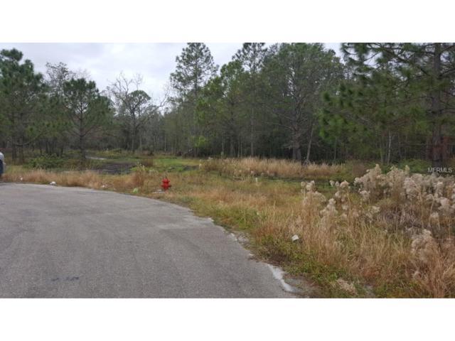 4100 Coyote Trail, Polk City, FL 33868 (MLS #T2915013) :: RE/MAX Realtec Group