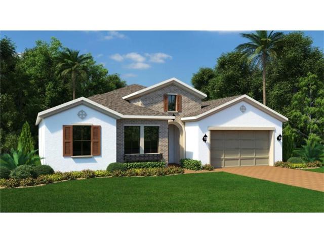 14162 Creekbed Circle, Winter Garden, FL 34787 (MLS #T2915028) :: KELLER WILLIAMS CLASSIC VI
