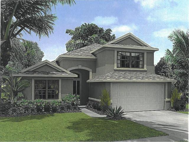 857 Symphony Isles Boulevard, Apollo Beach, FL 33572 (MLS #T2915043) :: TeamWorks WorldWide