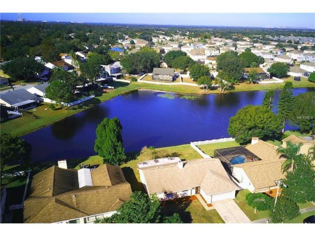 12919 Astorwood Place, Riverview, FL 33579 (MLS #T2915044) :: KELLER WILLIAMS CLASSIC VI