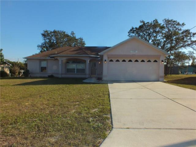 10280 Bannister Street, Spring Hill, FL 34608 (MLS #T2915051) :: Dalton Wade Real Estate Group