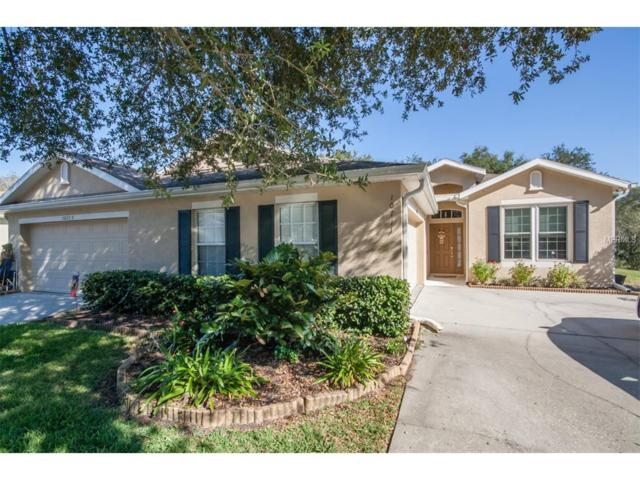 10711 Ashford Oaks Drive, Tampa, FL 33625 (MLS #T2915054) :: KELLER WILLIAMS CLASSIC VI
