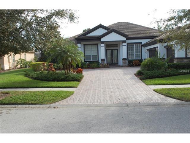 8471 Dunham Station Drive, Tampa, FL 33647 (MLS #T2915057) :: Dalton Wade Real Estate Group