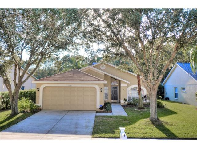 12957 Royal George Avenue, Odessa, FL 33556 (MLS #T2915064) :: Griffin Group