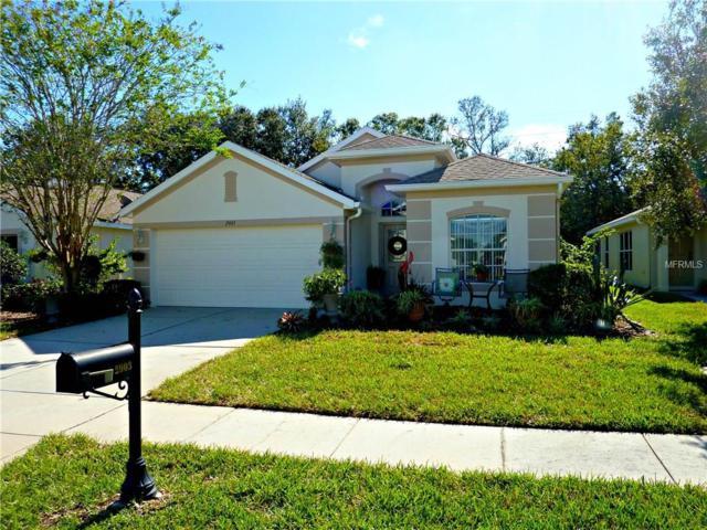 2903 Banyan Hill Lane, Land O Lakes, FL 34639 (MLS #T2915207) :: Griffin Group