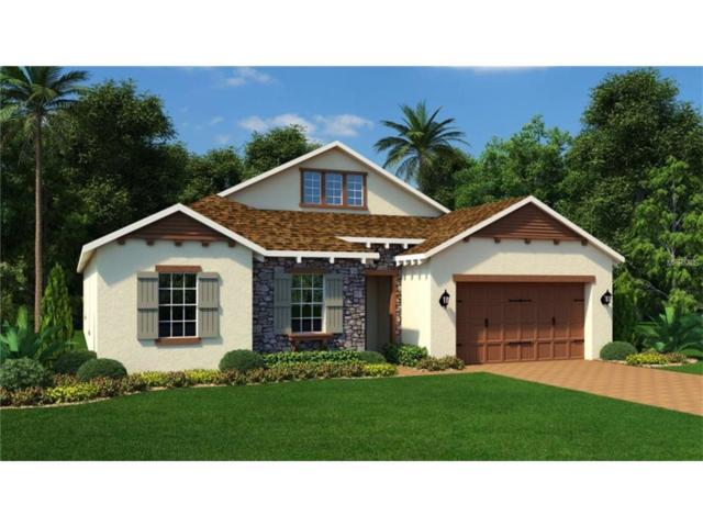 14402 Sunbridge Circle, Winter Garden, FL 34787 (MLS #T2915216) :: KELLER WILLIAMS CLASSIC VI