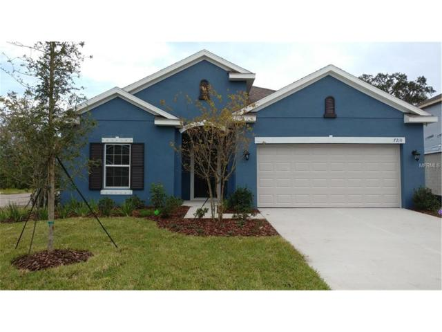 7210 Mill Hopper Court, Palmetto, FL 34221 (MLS #T2915243) :: Medway Realty