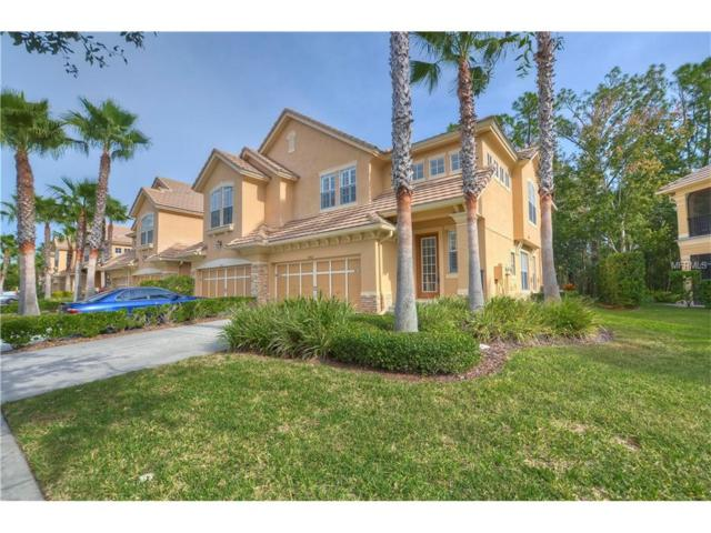 14621 Mirabelle Vista, Tampa, FL 33626 (MLS #T2915270) :: Griffin Group