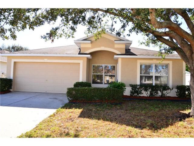 12107 Pepper Creek Court, Riverview, FL 33579 (MLS #T2915274) :: KELLER WILLIAMS CLASSIC VI