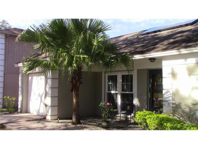 1620 Crossridge Drive, Brandon, FL 33510 (MLS #T2915286) :: Griffin Group