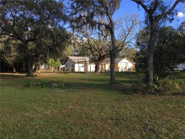 11215 Fern Hill Drive, Riverview, FL 33578 (MLS #T2915312) :: Dalton Wade Real Estate Group