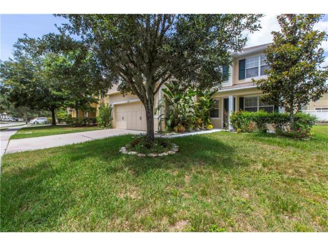 Wesley Chapel, FL 33545 :: Griffin Group