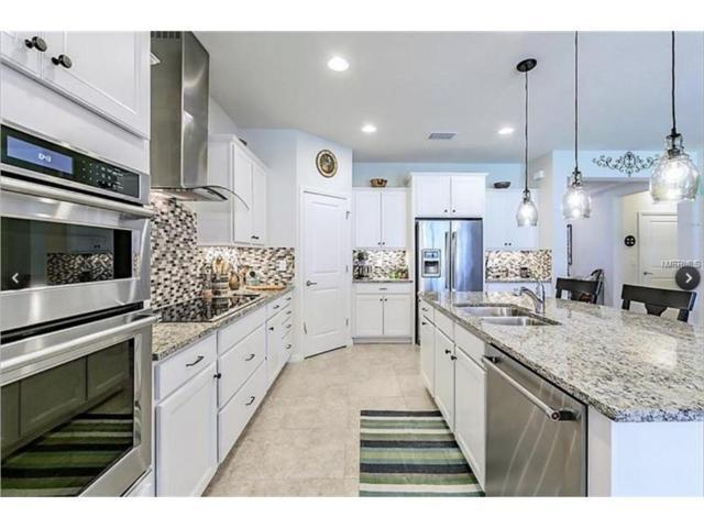 10305 Scarlet Chase Drive, Riverview, FL 33569 (MLS #T2915392) :: Dalton Wade Real Estate Group