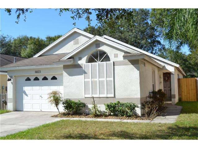 6623 Summer Haven Drive, Riverview, FL 33578 (MLS #T2915401) :: Dalton Wade Real Estate Group