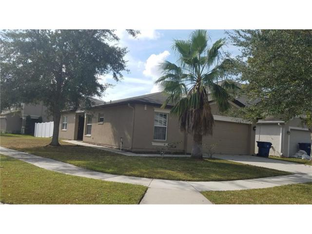 18350 Snowdonia Drive, Land O Lakes, FL 34638 (MLS #T2915403) :: Griffin Group