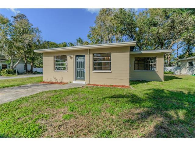 311 1ST Avenue SW, Lutz, FL 33548 (MLS #T2915433) :: Griffin Group