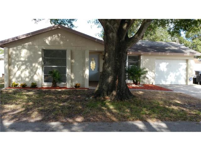 10113 Lazy Creek Court, Tampa, FL 33615 (MLS #T2915454) :: Dalton Wade Real Estate Group