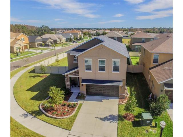 21378 Southern Charm Drive, Land O Lakes, FL 34637 (MLS #T2915460) :: Griffin Group