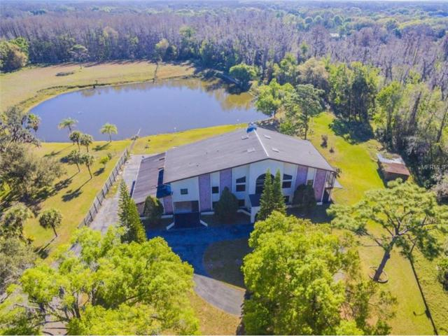 18409 Tyler Road, Odessa, FL 33556 (MLS #T2915468) :: Griffin Group