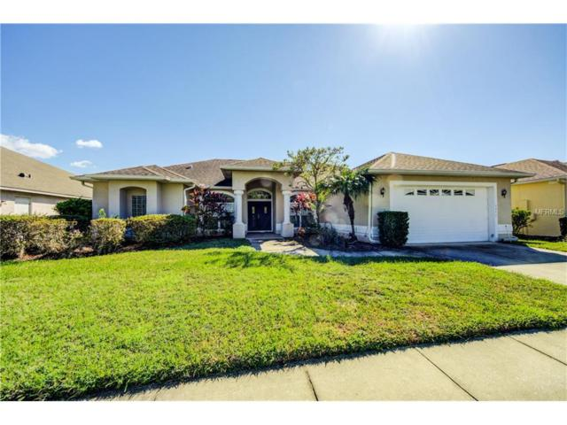 4042 Brookmyra Drive, Orlando, FL 32837 (MLS #T2915479) :: G World Properties