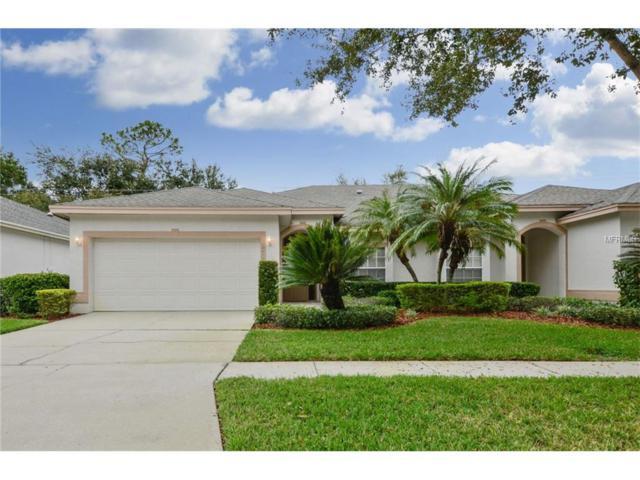 10415 Mulligan Court, Tampa, FL 33647 (MLS #T2915487) :: Sosa | Philbeck Real Estate Group