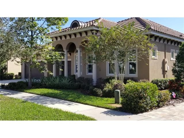 Lithia, FL 33547 :: Team Bohannon Keller Williams, Tampa Properties