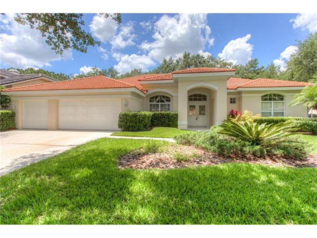 17808 Eagle Trace Street, Tampa, FL 33647 (MLS #T2915700) :: The Lockhart Team