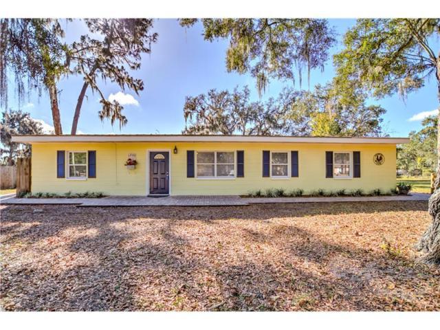 1205 Pelote Cemetery Road, Lithia, FL 33547 (MLS #T2915771) :: Team Turk Real Estate