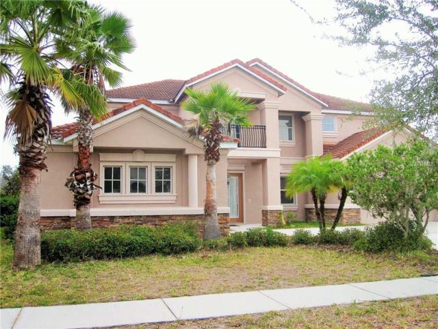 8368 Dunham Station Drive, Tampa, FL 33647 (MLS #T2915806) :: Team Bohannon Keller Williams, Tampa Properties