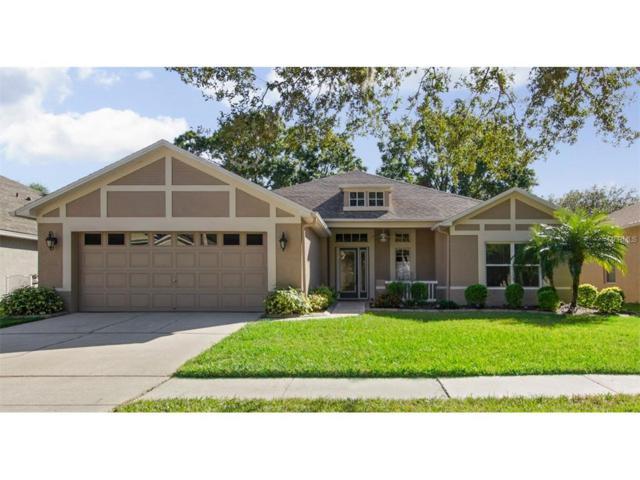 16907 Harrierridge Place, Lithia, FL 33547 (MLS #T2915964) :: Team Turk Real Estate