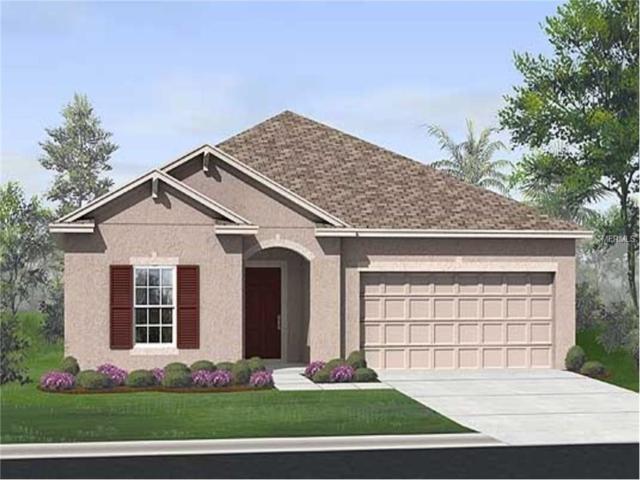7377 Sugar Brook Place, Wesley Chapel, FL 33545 (MLS #T2916114) :: Team Bohannon Keller Williams, Tampa Properties