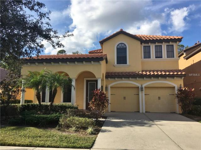 20324 Heritage Point Drive, Tampa, FL 33647 (MLS #T2916153) :: Team Bohannon Keller Williams, Tampa Properties