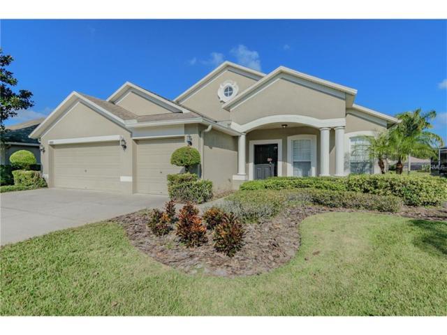 16501 Nikki Lane, Odessa, FL 33556 (MLS #T2916270) :: Team Bohannon Keller Williams, Tampa Properties