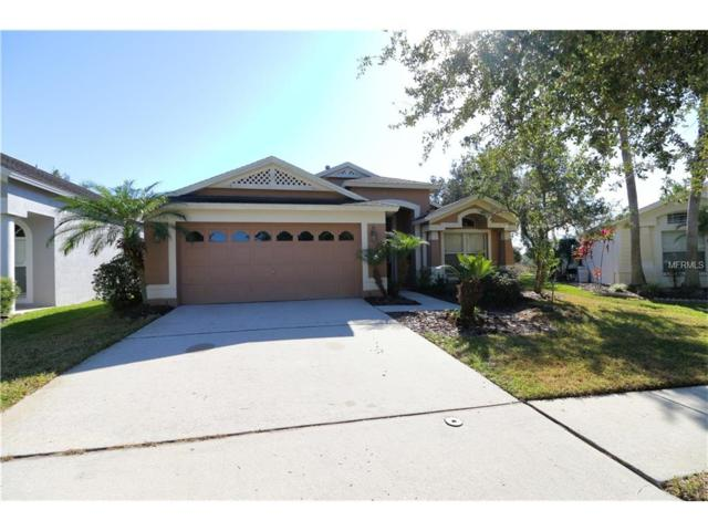 10141 Heather Sound Drive, Tampa, FL 33647 (MLS #T2916418) :: Team Bohannon Keller Williams, Tampa Properties