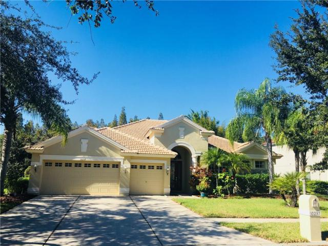 10237 Estuary Drive, Tampa, FL 33647 (MLS #T2916423) :: Team Bohannon Keller Williams, Tampa Properties