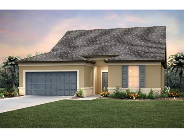 4905 111TH Terrace E, Parrish, FL 34219 (MLS #T2916453) :: TeamWorks WorldWide