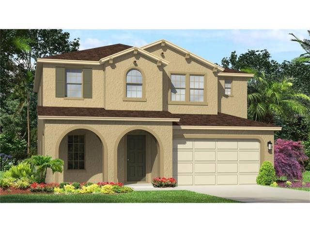 12114 Perennial Place, Lakewood Ranch, FL 34211 (MLS #T2916498) :: TeamWorks WorldWide