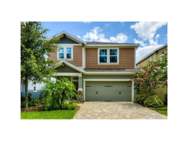16307 Bayberry View Drive, Lithia, FL 33547 (MLS #T2916535) :: Team Turk Real Estate