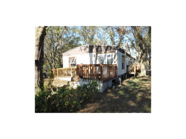2035 Camp Indianhead Road, Land O Lakes, FL 34639 (MLS #T2916687) :: Team Bohannon Keller Williams, Tampa Properties