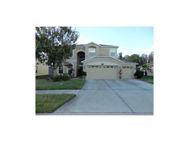 10840 Breaking Rocks Drive, Tampa, FL 33647 (MLS #T2916731) :: The Lockhart Team