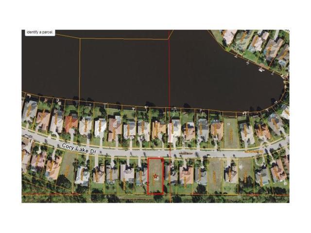 10530 Cory Lake Drive, Tampa, FL 33647 (MLS #T2916774) :: Team Bohannon Keller Williams, Tampa Properties