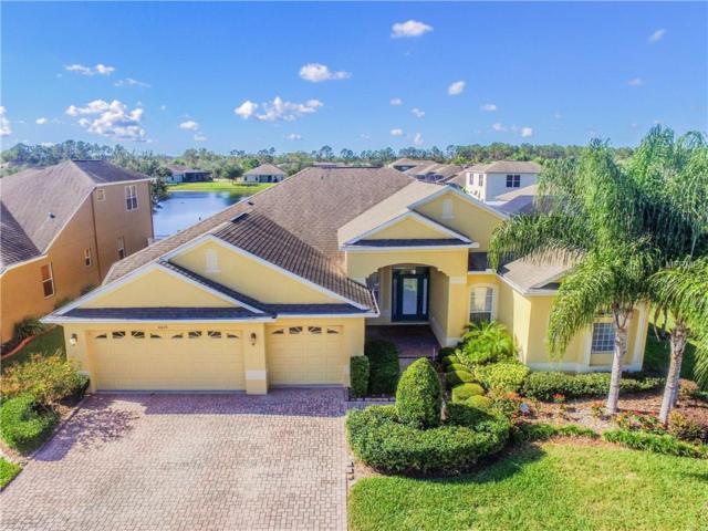 4619 Walnut Ridge Road, Land O Lakes, FL 34638 (MLS #T2916815) :: Team Bohannon Keller Williams, Tampa Properties