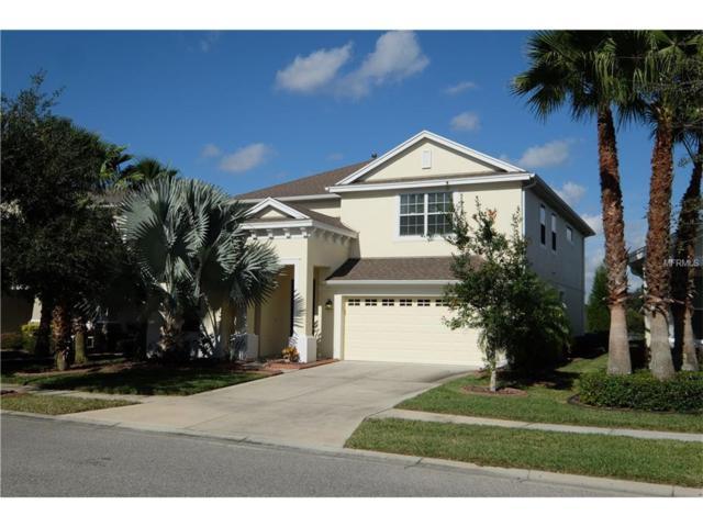 8111 Savannah Point Court, Tampa, FL 33647 (MLS #T2916877) :: Team Bohannon Keller Williams, Tampa Properties