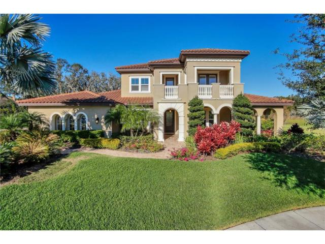 16423 Chapman Crossing Drive, Lithia, FL 33547 (MLS #T2917026) :: Team Bohannon Keller Williams, Tampa Properties
