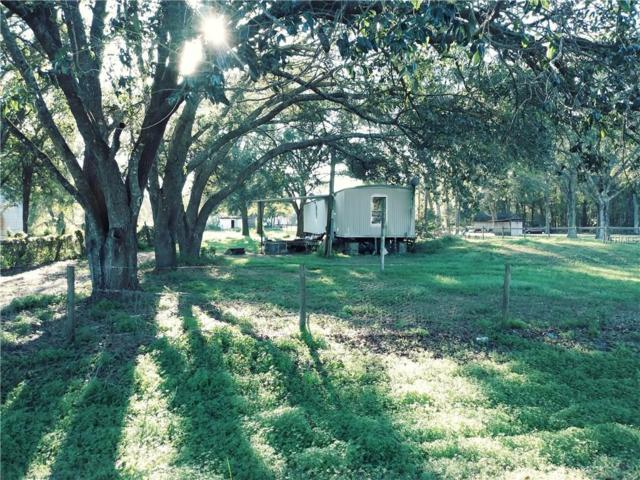 9811 Bahia Loop, Land O Lakes, FL 34639 (MLS #T2917037) :: The Duncan Duo Team